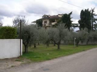 Foto - Terreno edificabile residenziale a Nocciano