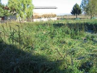 Foto - Terreno edificabile residenziale a Campolongo Tapogliano