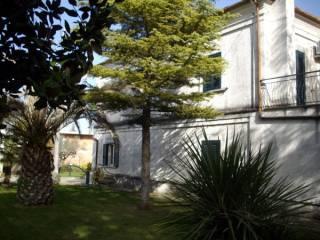Foto - Casa indipendente Contrada Casali 925, Nocciano