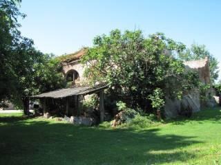 Foto - Rustico / Casale, da ristrutturare, 280 mq, San Sisto, Rovigo