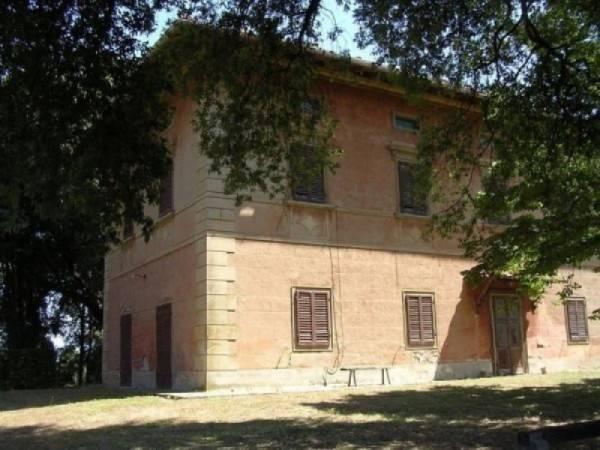 foto  Azienda agricola in Vendita a Collesalvetti