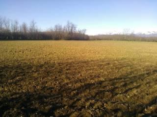 Foto - Terreno agricolo in Vendita a Robbiate