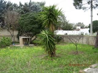 Foto - Terreno edificabile residenziale a Leporano