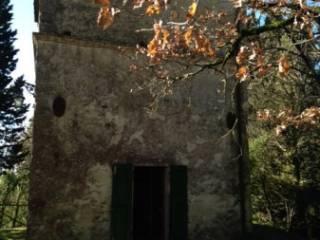 Foto - Rustico / Casale, ottimo stato, 45 mq, San Casciano dei Bagni