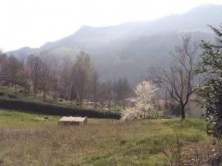 Foto - Terreno edificabile residenziale a Sestino