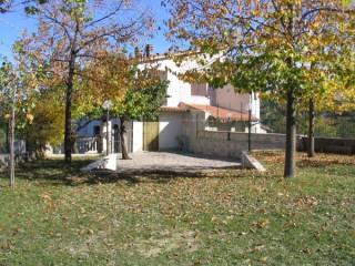 Foto - Casa indipendente Strada Statale 4, Frazione Torre Santa Lucia, Acquasanta Terme