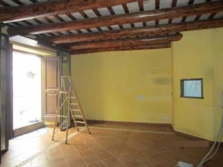 Immobile Affitto Montecosaro