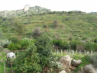 Foto - Terreno agricolo in Vendita a Forza d'Agrò