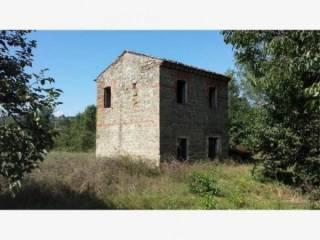 Photo - Country house via due Cone, La Badia, Ceccano