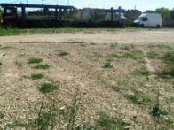 Foto - Terreno agricolo in Vendita a Giugliano in...