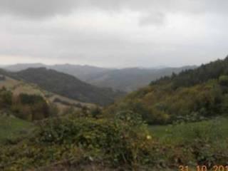 Foto - Terreno agricolo in Vendita a Predappio