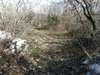 Foto - Terreno agricolo in Vendita a Duino-Aurisina
