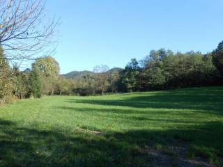 Foto - Terreno agricolo in Vendita a Zandobbio