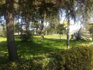 Foto - Rustico / Casale, buono stato, 180 mq, Sabaudia