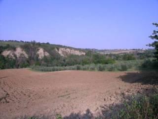 Foto - Terreno agricolo in Vendita a Verucchio