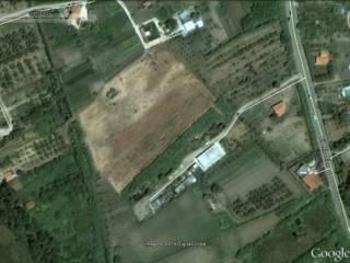 Foto - Terreno edificabile commerciale a Termoli