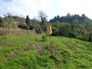 Foto - Rustico / Casale, ottimo stato, 400 mq, Mombello Monferrato