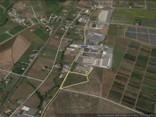 Foto - Terreno edificabile industriale a Lanuvio