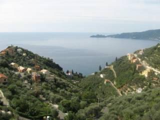 Foto - Villa, nuova, 440 mq, Zoagli