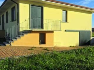 Foto - Casa indipendente 130 mq, nuova, Montagnana