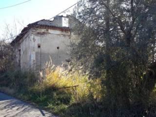 Foto - Terreno edificabile residenziale a Castiglione Cosentino