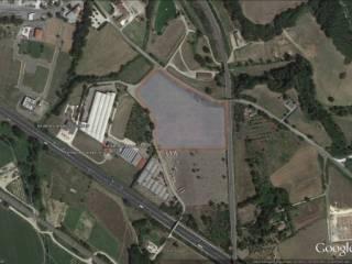 Foto - Terreno edificabile industriale a Attigliano