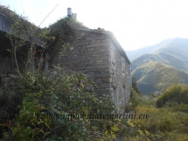 foto  Rustico / Casale, da ristrutturare, 160 mq, Castel Vittorio