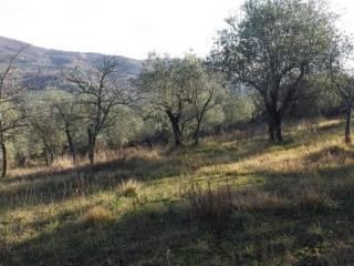 Foto - Terreno agricolo in Vendita a Fiesole