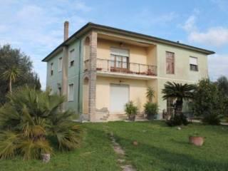 Foto - Rustico / Casale, buono stato, 455 mq, Bolgheri, Castagneto Carducci