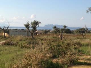 Foto - Terreno agricolo in Vendita a Marsala