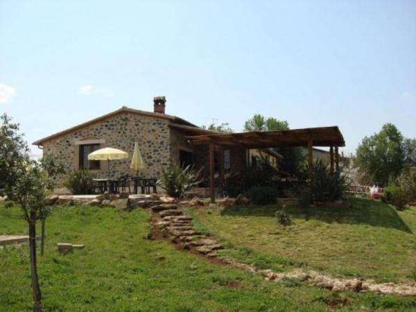 foto  Azienda agricola in Vendita a Grosseto