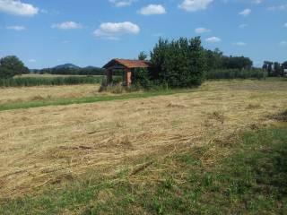 Foto - Terreno edificabile residenziale a Castiglione del Lago