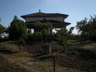 Foto - Villa Contrada Frasso, Pietrelcina