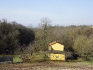 Foto - Terreno agricolo in Vendita a Sanfrè