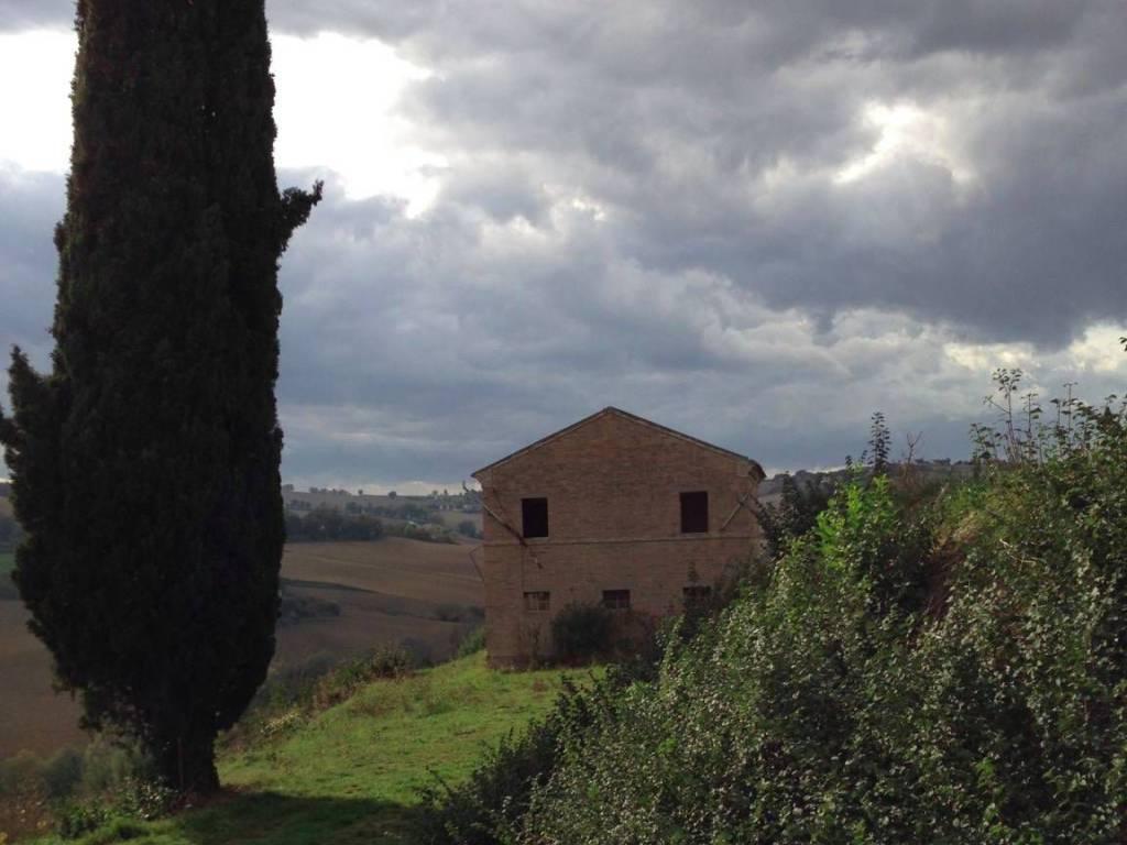 foto  Rustico / Casale Contrada Monte Arsiccio, Montelupone