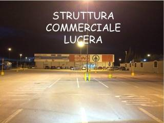 Immobile Affitto Lucera