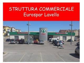 Immobile Affitto Lavello