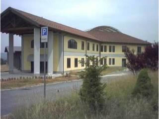 Immobile Vendita Belforte Monferrato