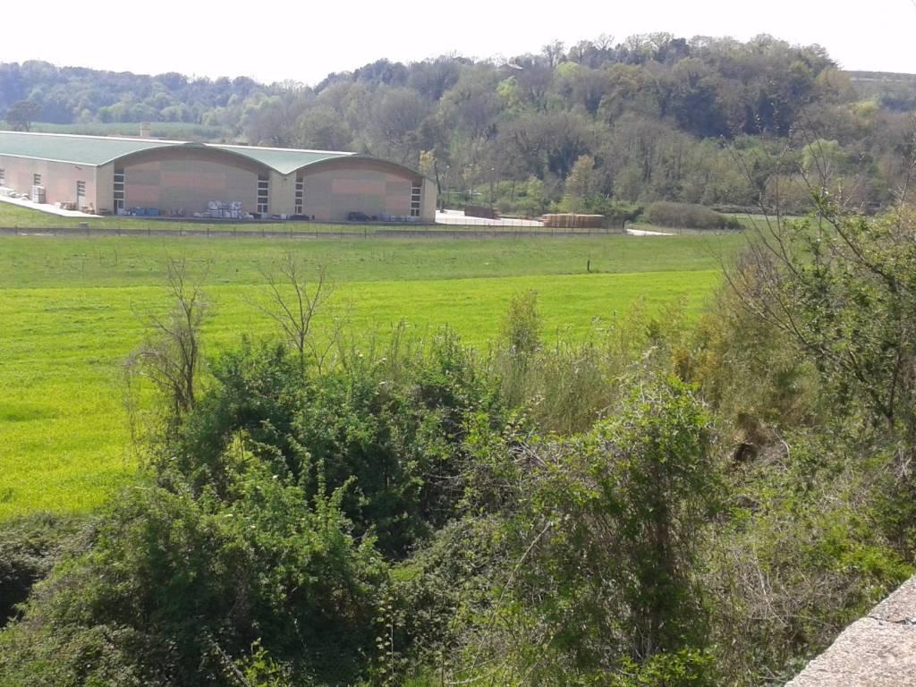 foto  Terreno agricolo in Vendita a Civita Castellana