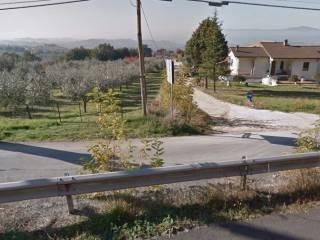 Foto - Terreno edificabile residenziale a Calvi dell'Umbria