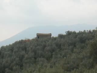 Foto - Rustico / Casale Contrada Colle Rosa, Terrignano, Paliano