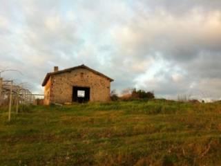 Foto - Rustico / Casale via Pratolungo, Velletri