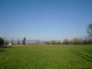 Foto - Terreno agricolo in Vendita a Bolzano Vicentino