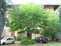Villa Vendita Carpineto Romano