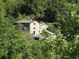 Foto - Rustico / Casale, ottimo stato, 225 mq, Stiavola, Badia Tedalda