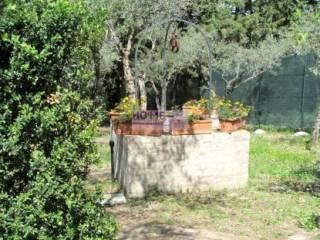 Foto - Villa Contrada San Grisogono, Grisogono, Mogliano