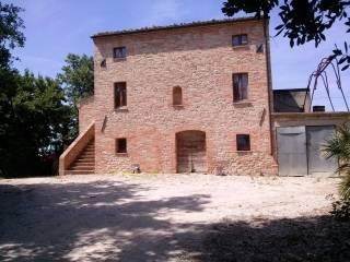 Foto - Rustico / Casale Strada Provinciale 170, Crocerossa, Montedinove