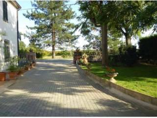 Foto - Villa bifamiliare, ottimo stato, 295 mq, San Savino, Fusignano