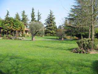 Foto - Villa Comune, Vigonovo