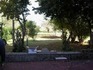 Foto - Rustico / Casale via Casilina, Ceprano